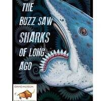 Exhibition: The Buzz Saw Sharks of Long Ago