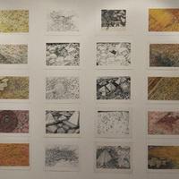 McCutchan Art Center/Pace Galleries