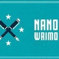 NanoWriMo Write In