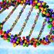 Biology Colloquia Series: Prof. Karine Gibbs