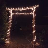 Mytoi Winter Solstice Illumination
