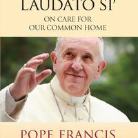 Sustainability Roundtable: Pope Francis, Climate Change and US Catholic Voters