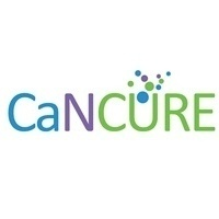 """National Nanomedicine Seminar - """"A Comprehensive Approach to Cancer Treatment Using Magnetic Nanoparticles: From Basic Engineering to In Vivo Studies"""""""