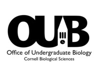 Biological Sciences Honors Poster Symposium