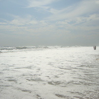 Cupsogue Beach County Park