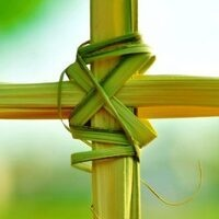 LIVE-Streamed: Palm Sunday of the Passion of the Lord Mass