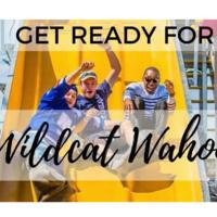 Annual Wildcat Wahoo Carnival