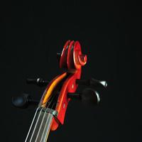 Junior Recital: Shaleah Feinstein, violin