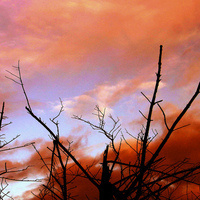 How it all ends? Apocalypse narratives and the lack of civic futures
