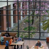 Celebration of Undergraduate Research: Participant Reception
