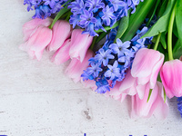 Friends of Strong Gift Shop: Mother's Day Sale