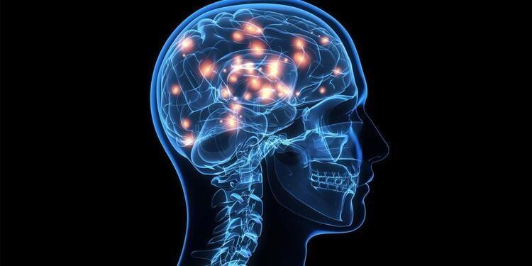 Center for Neuroscience