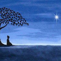 Mindfulness-Based Self-Compassion Course: Introduction Session