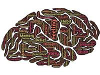 Neuroscience Graduate Program Interview Weekend