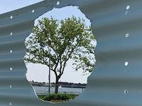 Oculi: Governors Island Installation