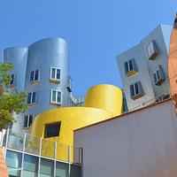 Public Art Tour | Summer Series| Art and Architecture Tour
