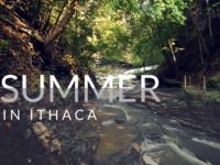 Summer Econ Events: Picnic & KUBB on the Arts Quad