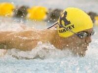 Swimming & Diving vs, Grove City, Gannon & Case