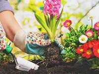 Master Gardener Course