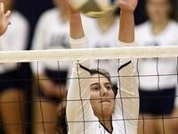 Volleyball Elite Camp
