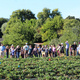 A crowd of people touring the UCSC Farm
