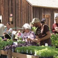 UCSC Farm & Garden Spring Plant Sale