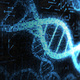 The Postgenomic Condition: Truth, Race and Justice After the Genome