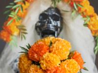 Budding Artists: Paper Marigolds & Sugar Skull Masks for Dia de los Muertos