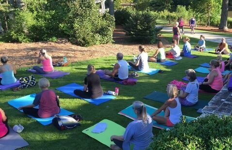 Yoga in the Park - Vines Park