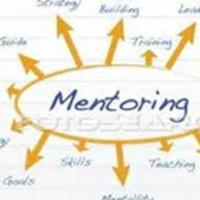 Executive Fellows Mentoring Project