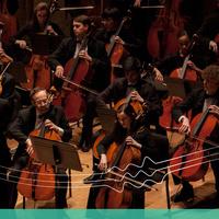 Side-By-Side: Richmond Symphony Youth Orchestra with the Richmond Symphony