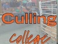 Culling College