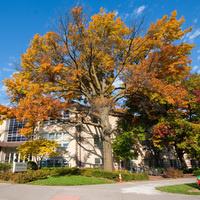 Eisenhower Hall
