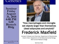 """MBG Friday Seminar with Frederick Maxfield """"How macrophages and microglia eat objects larger than themselves (dead adipocytes and amyloid)"""""""