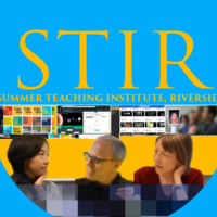 Summer Teaching Institute Riverside (STIR)