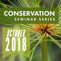 Conservation Seminar: Ellen McCullough