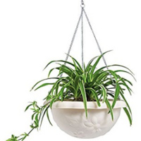 Design Your Own Plant Hanger
