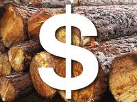 Timber Tax Workshop