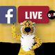 Facebook Live Q&A Discussions