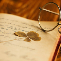 Insight Seminars: Literature of the Great War