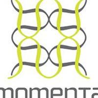 Momenta Workshop - Portland 2018