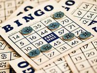 SUB Presents: Bingo Night