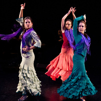 Performance: Rebeca Tomas and A Palo Seco Flamenco Company