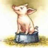 CHILDREN'S THEATER OF CHARLESTON PRESENTS CHARLOTTE'S WEB