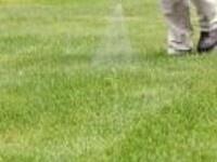 Commercial Landscape Pest Control Workshop