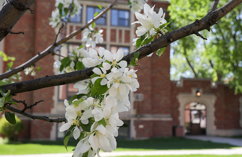 Spring Registration Appointment Times Available in Campus Connection