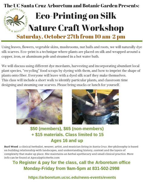 Eco Printing On Silk Nature Craft Workshop Cruzcal
