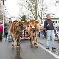 Christmas in Edgartown Parade