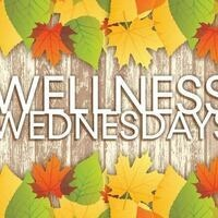 Wellness Wednesday: Therapy Fluffies