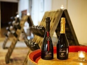 Champagne Tours at Pindar Vineyards